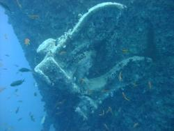 Red Sea Thistlegorm anchor